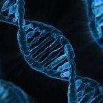 DNA tayappention